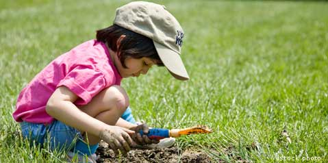 ransang minda anak, otak anak berkembang, sel berhubung, perkembangan anak ikut umur, tips anak bijak, aktiviti anak bijak, anak bijak, ibubapa cemerlang, anak sihat, anak otak bijak, anak pandai,