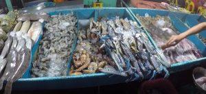 makanan-laut