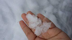 snow, salji, pegang salji
