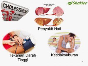 kolesterol-tinggi