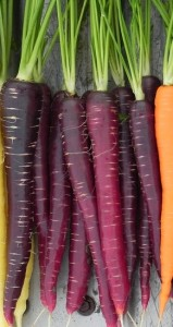 purple carrot, vivix shaklee, vivix diabetes, masalah stroke, vivix utk stroke, kandungan vivix, muscadine grapes, elderbery, polygonum cuspidatum, purple carrot, khasiat vivix, kelebihan vivix, anti kanser, keistimewaan vivix, awet muda, vivix awet muda