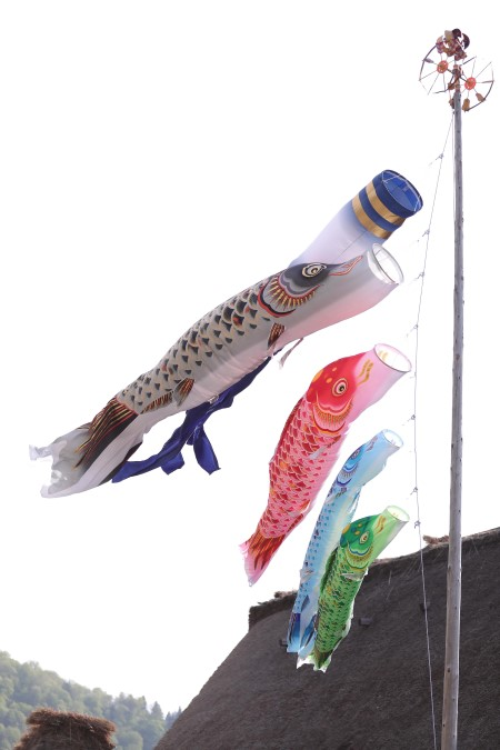 fish flag, only in japan
